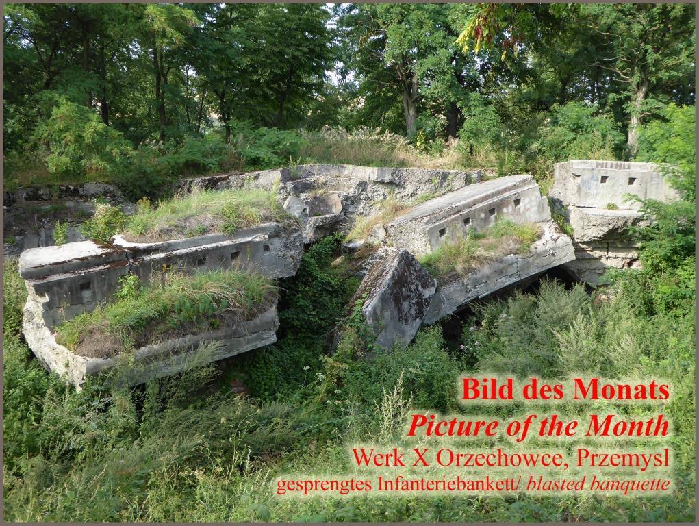 Werk X Orzechowce Festung Przemysl